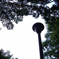 【写真】ミニデジで撮影した朝の風景(木々の間の街灯)