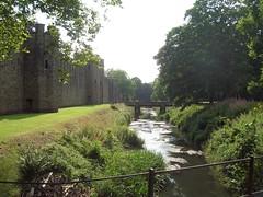 Cardiff_Castle_6415