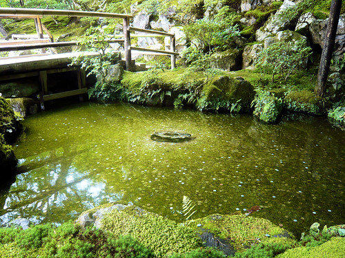 Pond of good fortune - Ginkakuji