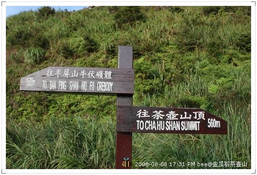 2008.08.08金瓜石茶壺山爬山 (1)