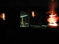 Fern-Tree Friends Faces (kieransullivan) Tags: orange black green faces torch parkbench ferntree