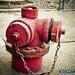 fire_hydrant_DSCN5582