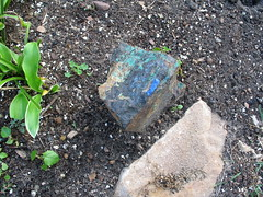 Green Loves Blue, Minneapolis, Minnesota, Fall Equinox, September 2007, photo © 2007-2008 by QuoinMonkey. All rights reserved.