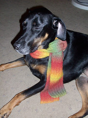 Lola_OneRowScarf_908eyesClosed