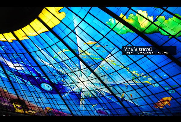 【高雄捷運橘線】高捷橘線之旅~美麗島站 - 光之穹頂《圖多》