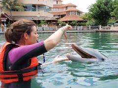 P9260699 (ABC Dolphin Trainer Academy) Tags: