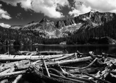 Driftwood (sawtoothphoto) Tags: lake mountains lakes idaho national area recreation cramer sawtooth sawtooths pentax67 snra