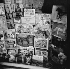 Toy Horse Display (Sam Collins) Tags: horses blackandwhite horse dog reflection 120 film window shop wales mediumformat toys caballo holga display delta pro 100 2008 ilford nags anotherbadscan samcollins colourstreamscanning samcollinsphotography wwwsamcollinsphotographycouk