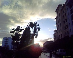 Casablanca شروق