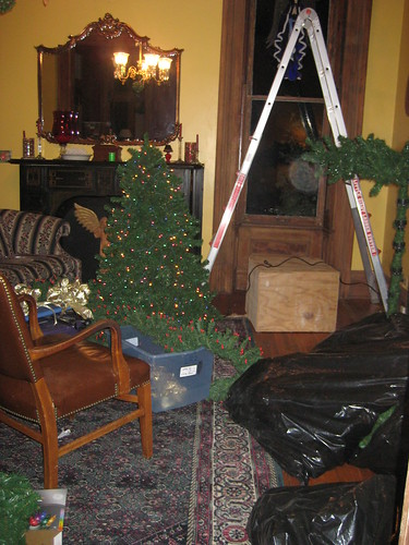 lving room tree going up