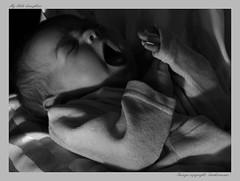 2 weeks old baby (maartenhermans) Tags: blackandwhite baby newborn canoneos gaping 2weeksold mydaughter newlife littlebaby eos40d littlehuman