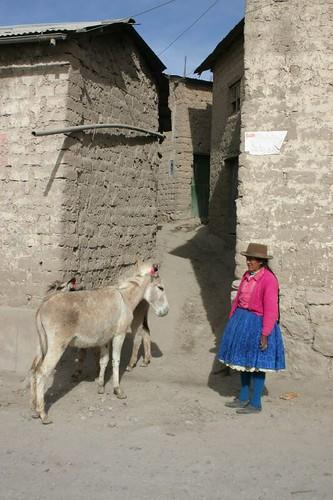 Puquio madam + donkey...