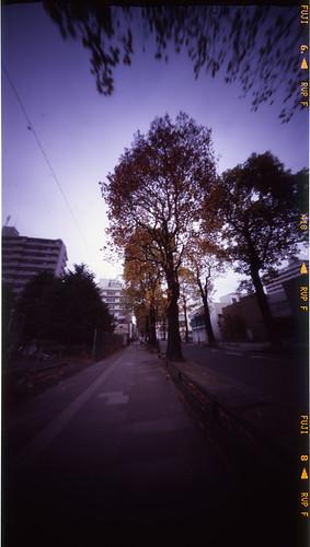 2008_1109_ブローニ03_東北大片平北門前