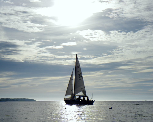 2008-11-16 Chatham 007