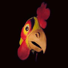 bok-bok-bokAAAAA (poopoorama) Tags: selfportrait chicken me nikon mask sigma danny year2 day234 d300 365days strobist 1850mmf28exmacrohsm