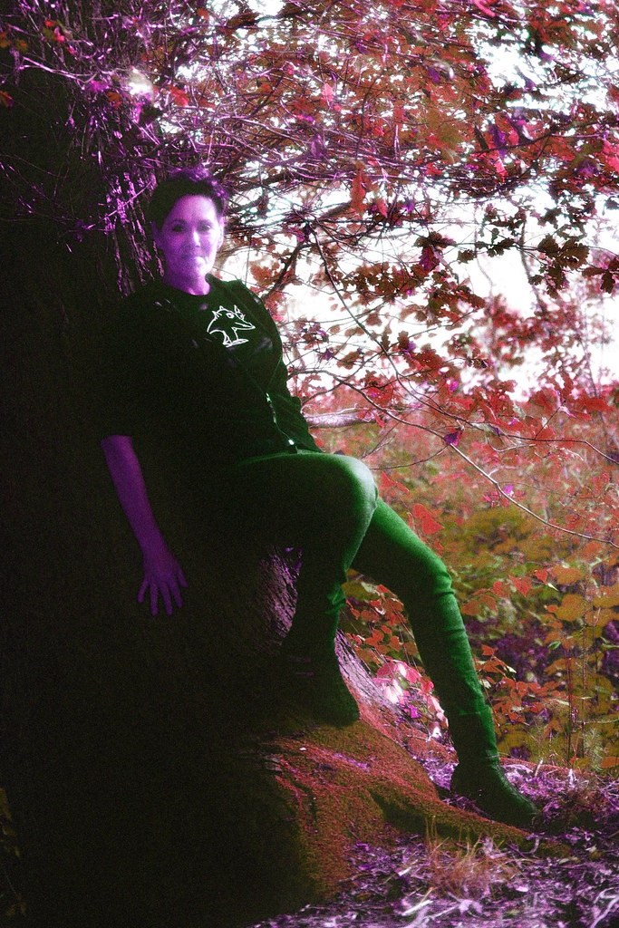 foto-boom-voor-flickr