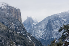 Yosemite in Winter (aaron_j_o) Tags: white snow color colour green nature colors beautiful beauty out landscape outdoors photography colorful pretty natural image photograph valley yosemite halfdome yosemitenationalpark elcapitan yosemitevalley nationalstateparks