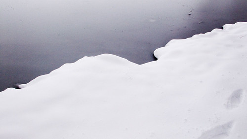 Ice on Greenlake