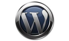wordpres logo big