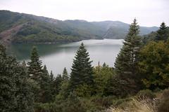 Lac de Villefort (Lozère, Cévennes)