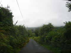 Driving home from Tinahely Show (St.Stello) Tags: ireland pinky cowicklow