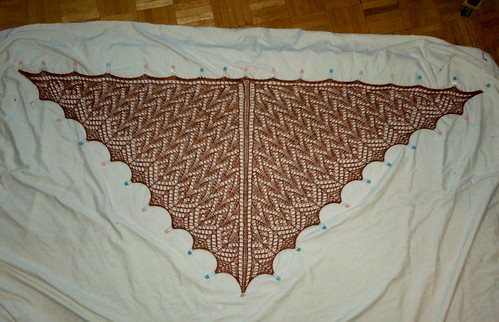 Lucky Penny Shawl - Complete