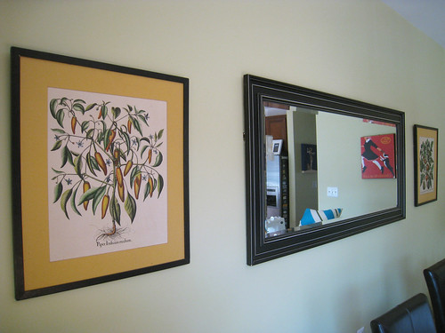 Pair of Vintage Botanical Prints