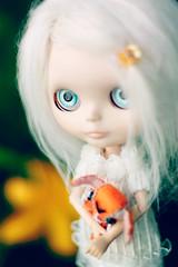 Special Girl - 173/365 ADAD 2011