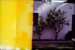 (LJ Slater) Tags: pasadena nikonf3hp landscapeorientation nikkor50mmf12ais