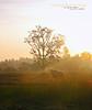 SERULING DILEMBAH SUNYI (alzikr) Tags: sunrise landscape village malaysia kg terengganu sunyi manir seruling baloh dilembah