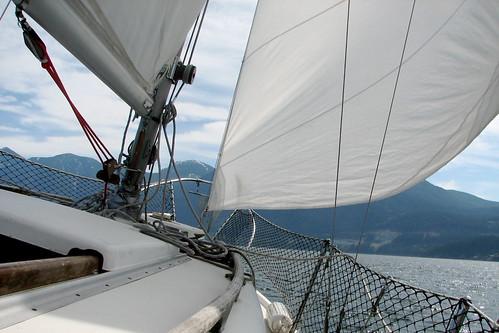 sailboat bowen tradewinds