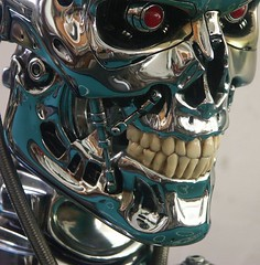 Sideshow (FelMarWETA) Tags: skull day head 11 replica stan bust judgement winston prop collectibles sideshow t2 endo t800 endoskeleton endoskull