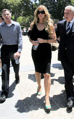 denise richards court 210708