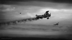 """Dogfight"" - Focker Triplane vs. Sopwith Camel (J.stephenson) Tags: sky plane vintage dark airplane fight nikon war fighter action aircraft smoke wwi airshow fighting combat dogfight biplane warplane geneseo triplane warplanes"