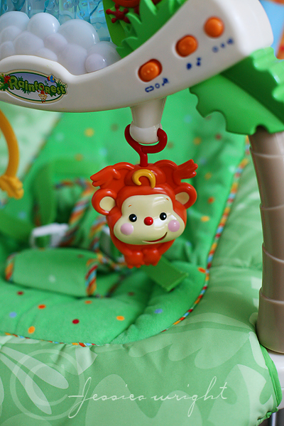 Monkey on the bouncer