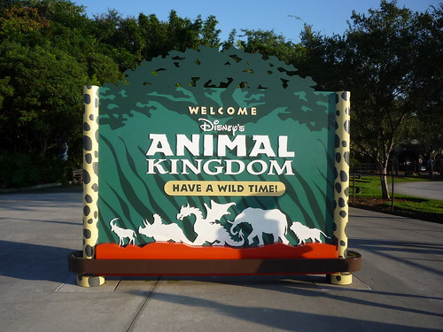 Day 4 - Animal Kingdom and the Boardwalk