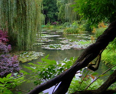 from the wisteria bridge (perseverando) Tags: france garden pond artist waterlilies monet painter giverny platinumphoto aplusphoto visiongroup favoritegarden