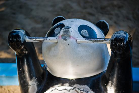 panda ride_9587