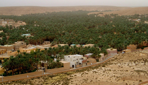 Oasis de Ghardaia