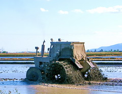 Auf dem Reisfeld (Martin Volpert) Tags: españa spain traktor landwirtschaft reis catalonia catalunya espagne spanien baixebre catalogna katalonien catalogne deltadelebre reisfelder ebrodelta mavo43