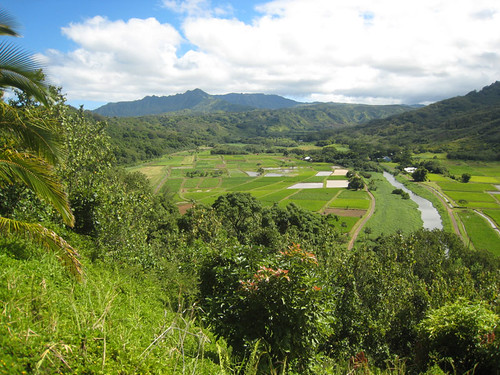 Swingers in hanalei hi Kauai Swingers Clubs and Lifestyle Clubs Hawaii