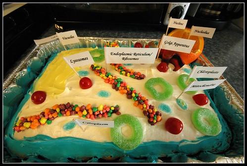 D Animal Cell Model Cake