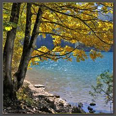Autumn (Giancarlo Giupponi  Trentino) Tags: autumn italy autunno trentino italians gmt giancarlogiupponi micarttttworldphotographyawards micartttt lagoditove