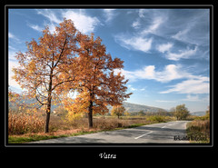 Vatra (Aleksandar Andjelkovic) Tags: road autumn trees cloud tree fall nature clouds landscape leaf serbia ashes ash leafs priroda put srbija oblak serbian cacak drvo jasen autumnleafs jesen oblaci lisce pejzaz abigfave autumnandwinter autumn2008images seoskiput jesenjelisce jasenovi crvenolisce predeo