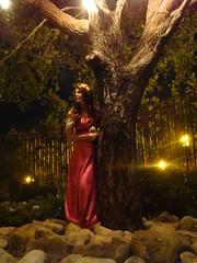 Grand Californian Photo Shoot: Giselle (CrimsonGypsy1313) Tags: tree princess cosplay disneyland disney pip giselle enchanted grandcalifornianhotel