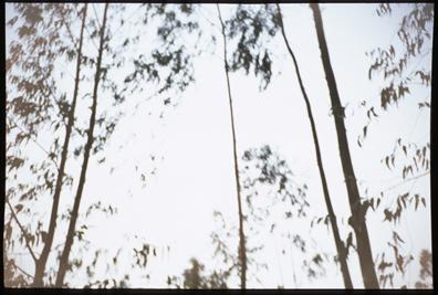 frame2s