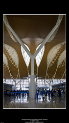 Shanghai Pudong International Airport Terminal