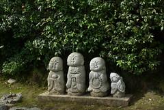 wayside (naoK) Tags: trip macro 35mm kyoto pentax arashiyama limited k10d smcpentaxda35mmf28macrolimited