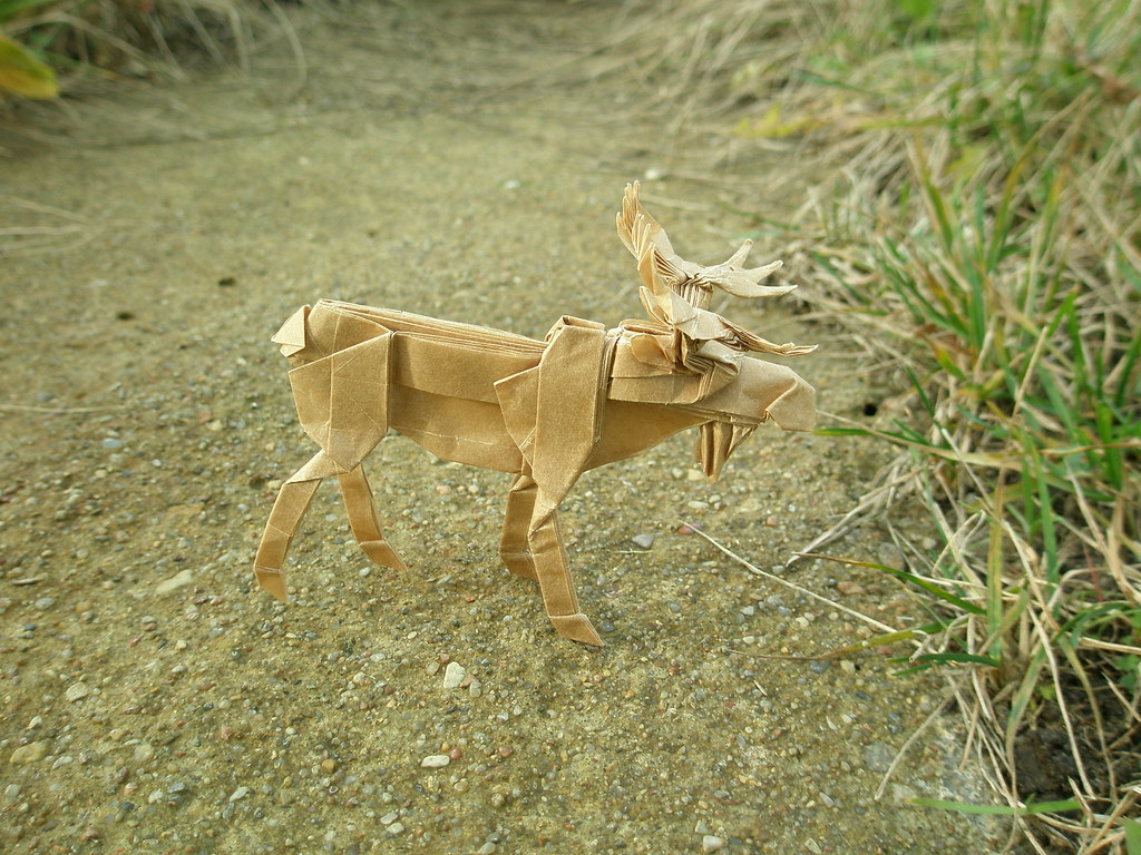 Moose by Robert Lang, folded by  Artur Biernacki