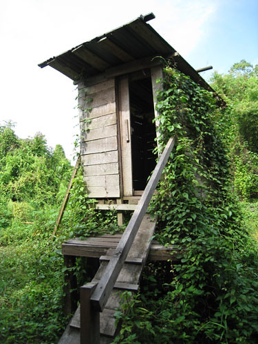 Toilet in the Jungle